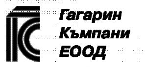 Gagarin Company Ldt